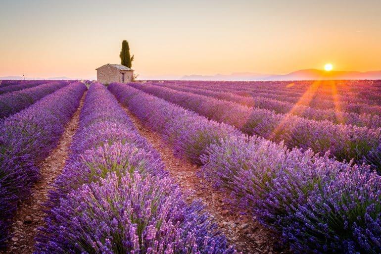 Provence in Frankrijk